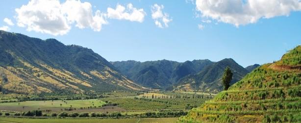 guia-Valle-de-colchagua