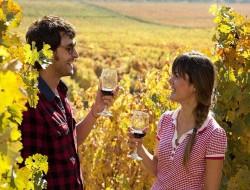 10-vinhos-imperdiveis-para-provar-no-valle-de-colchagua2